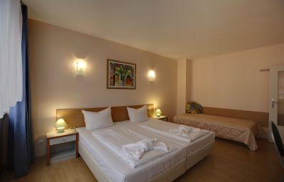 Sanader_Pension-Berlin-Room-10-38354.jpg