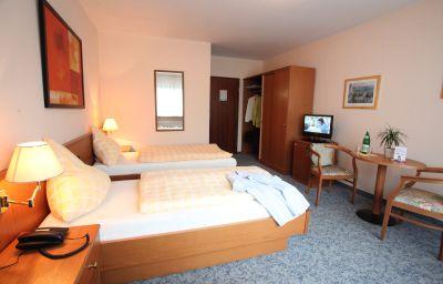 Zum_Schwarzen_Baeren_Weinhaus-Coblenz-Double_room_standard-1-38395.jpg