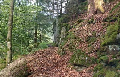 Klosterhof-Wehr-Info-2-60615.jpg