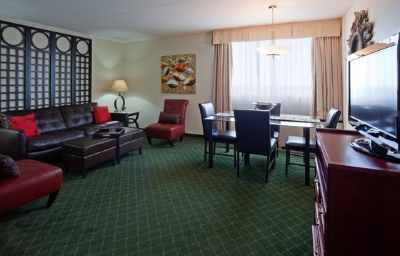 Suite Holiday Inn WINNIPEG-SOUTH Winnipeg (Manitoba)