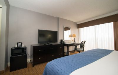 Zimmer Holiday Inn DENVER EAST - STAPLETON