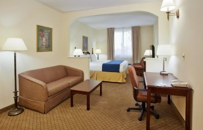 Suite Holiday Inn Express & Suites SAN JOSE-INTERNATIONAL AIRPORT