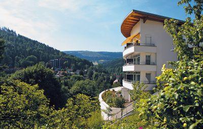 Schwarzwald_Panorama-Bad_Herrenalb-Exterior_view-1-66833.jpg