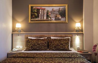 Tashkonak-Istanbul-Double_room_standard-70106.jpg