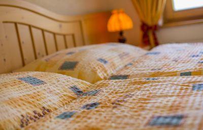 Chambre individuelle (standard) Alpenhotel zur Wildi