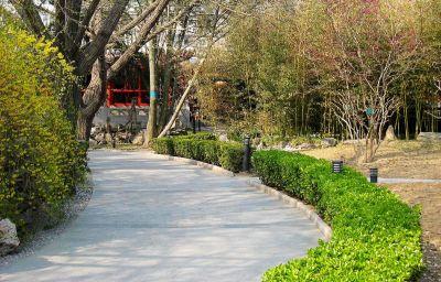 Garden Bamboo Garden