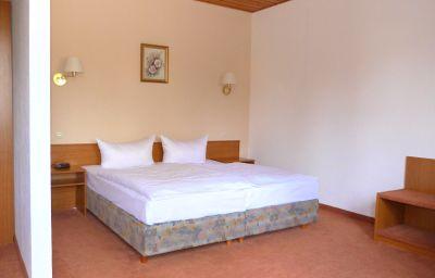 Muehlenhof_Pension-Heidenau-Business-Zimmer-4-73315.jpg