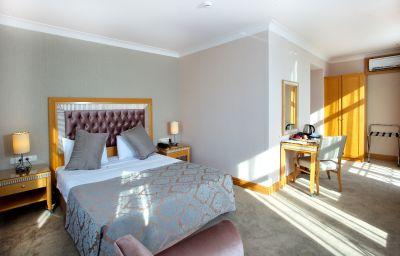Villa_Zurich-Istanbul-Double_room_standard-6-77631.jpg