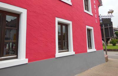 Vista exterior Hochdorfer Hirschen