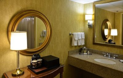 DoubleTree_by_Hilton_Hotel_Houston_-_Greenway_Plaza-Houston-Room-16-100267.jpg