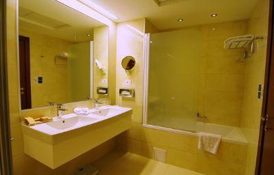 Holiday_Inn_SKOPJE-Skopje-Room-18-105126.jpg