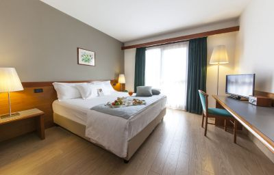 Ai_Gelsi_Hotel_Ristorante-Codroipo-Doppelzimmer_Standard-2-110328.jpg