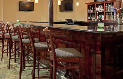 Bar del hotel Holiday Inn HASBROUCK HEIGHTS-MEADOWLANDS