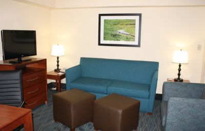 Holiday_Inn_Express_Suites_WILMINGTON-UNIVERSITY_CTR-Wilmington-Suite-9-120051.jpg