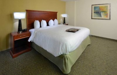 Hampton_Inn_Raleigh-Town_of_Wake_F-Wake_Forest-Room-19-123544.jpg