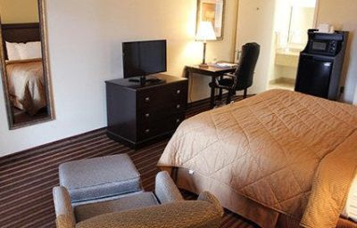 Camera Comfort Inn & Suites at Tropicana Field St. Pete Beach (Florida)