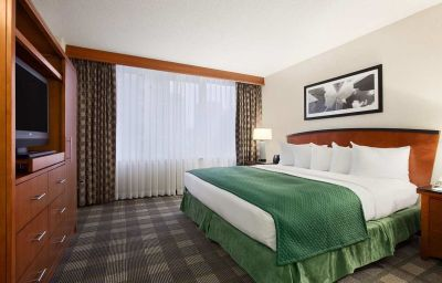 Embassy_Suites_Hotel_Chicago-Downtown-Chicago-Suite-16-135699.jpg