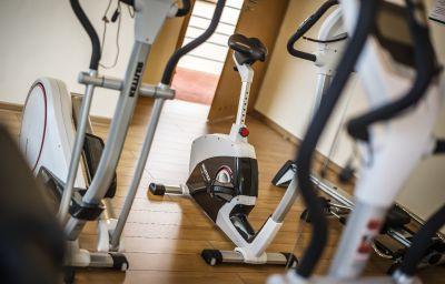 Henlex-Poznan-Fitness_room-143956.jpg