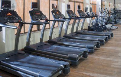 Wellness/fitness Crowne Plaza AMMAN