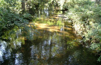 Surroundings Leisewitz Garten