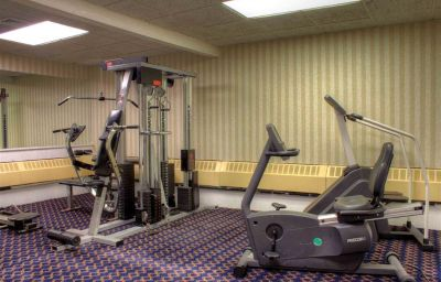 Wellness/Fitness BEST WESTERN WOODHAVEN INN -WOODHAVEN Woodhaven (Michigan)