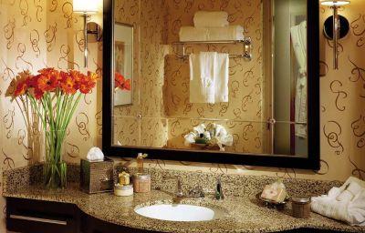 Hilton_Americas-Houston-Houston-Info-5-172149.jpg