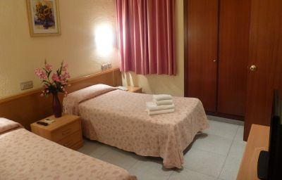 Double room (standard) Hotel Aneto