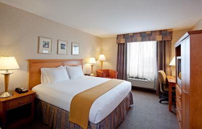 Habitación Holiday Inn Express NEW YORK-BROOKLYN