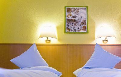 Vicus_Pension-Passau-Double_room_standard-2-251732.jpg