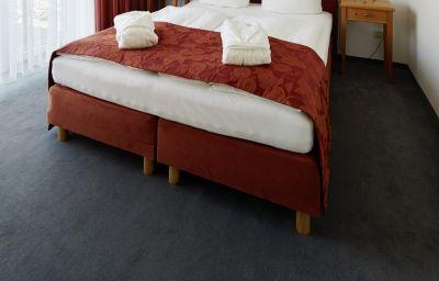 Doppelzimmer Economy Apparthotel Steiger