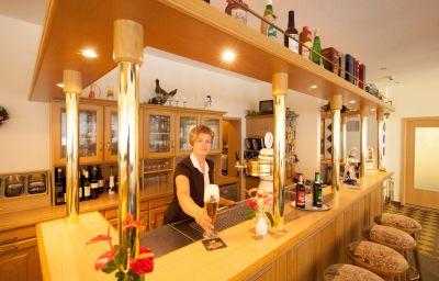 Am_Schlosspark-Wernigerode-Hotel_bar-252199.jpg