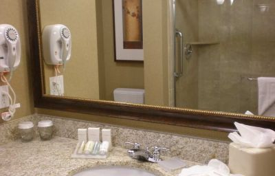 Hilton_Garden_Inn_Salt_Lake_City_Downtown-Salt_Lake_City-Suite-4-255679.jpg