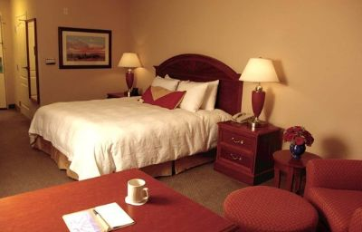Hilton_Garden_Inn_Mobile_East_Bay-Daphne-Daphne-Suite-5-365492.jpg