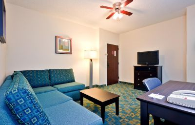 Suite Holiday Inn Express & Suites BRENTWOOD NORTH-NASHVILLE AREA Brentwood (Tennessee)