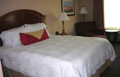 Hilton_Garden_Inn_Houston_Westbelt-Houston-Standardzimmer-3-370331.jpg