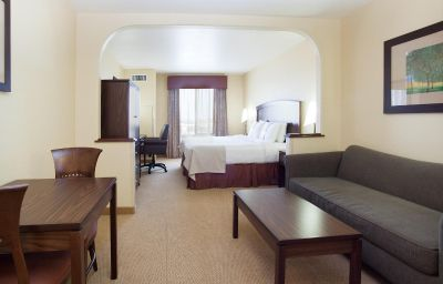 Suite Holiday Inn DENVER-PARKER-E470/PARKER RD Parker (Colorado)