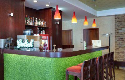 Karelia_Business_Hotel-Sankt-Peterburg-Hotel-Bar-3-376342.jpg