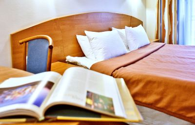 Einzelzimmer Standard Karelia Business Hotel
