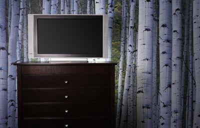 Hotel_Indigo_OTTAWA_DOWNTOWN_CITY_CENTRE-Ottawa-Room-24-390220.jpg