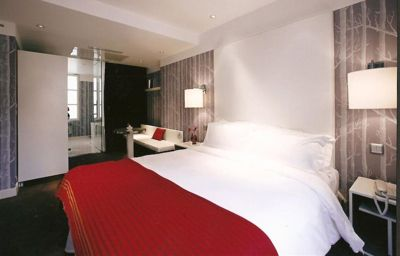 Le_Placide_St_Germain_des_Pres-Paris-Double_room_standard-13-393271.jpg