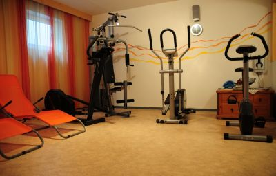 Apart-Chiara_Pension-Neustift-Wellness_and_fitness_area-2-399274.jpg