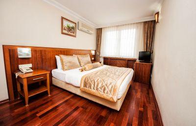 Pokój jednoosobowy (standard) Hotel Centrum Istanbul