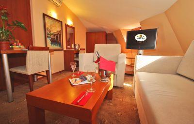 Golden_Rest_Hotel-Istanbul-Suite-407181.jpg