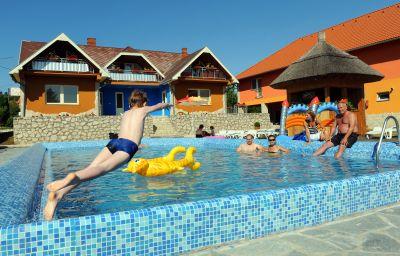 Wellness_Park_Pension-Gyenesdias-Pool-412460.jpg
