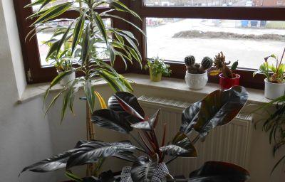 Interior view Weisse Elster