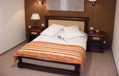 Room Levoslav House