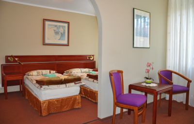 Double room (standard) Jantar