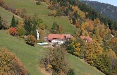 Bauernhof_Almbauer_-_Bergbauernhof_Morgenbesser-Trattenbach-Info-26-435052.jpg