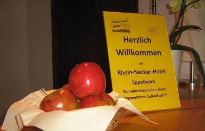 Info Rhein-Neckar
