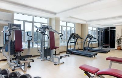 Fitness room Holiday Inn DAR ES SALAAM CITY CENTRE Dar es Salaam